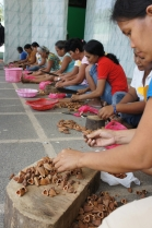 Getting the kernels out of the pili shells requires technique and skill. This contest will determine the fastest desheller of pili nuts based on the number and quality of the kernels retrieved within a period of 5 minutes. (Bulusan, 2013).