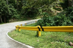 Kurbada sa Porog (Porog's Curve) is Bulusan's most identifiable curve road.