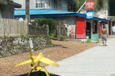 Drying pili nuts 'lagting' along the road in Barangay Poctol, Bulusan