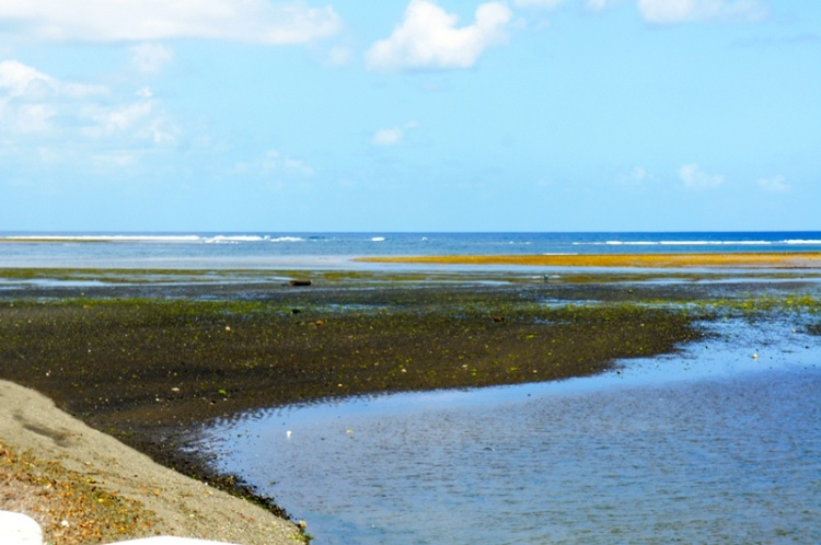 Bulusan's low tide seascape, February 2014