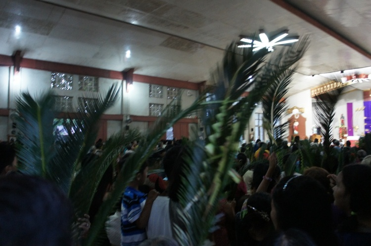 Local parishioners brought mostly oliba leaves to the event.