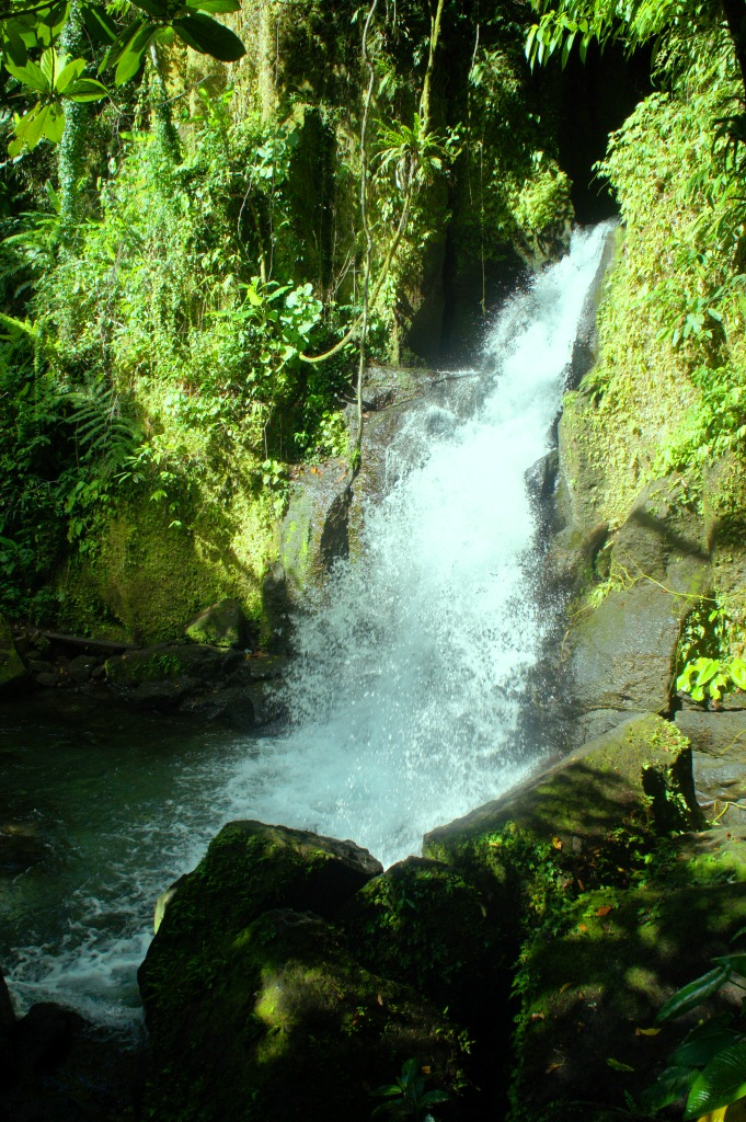 Bayugin Falls is the centerpiece of a tropical forest picnic grove.