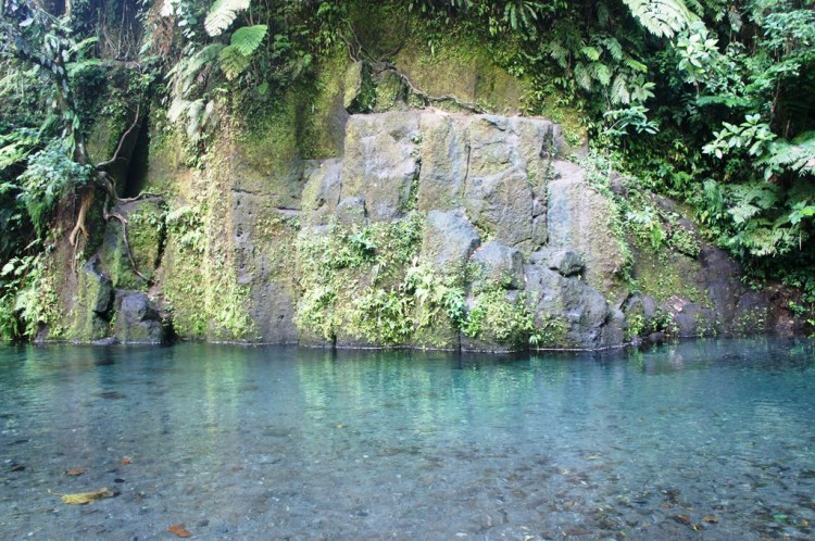The waters of Bayugin is so fresh and clean, you can drink straight from it.