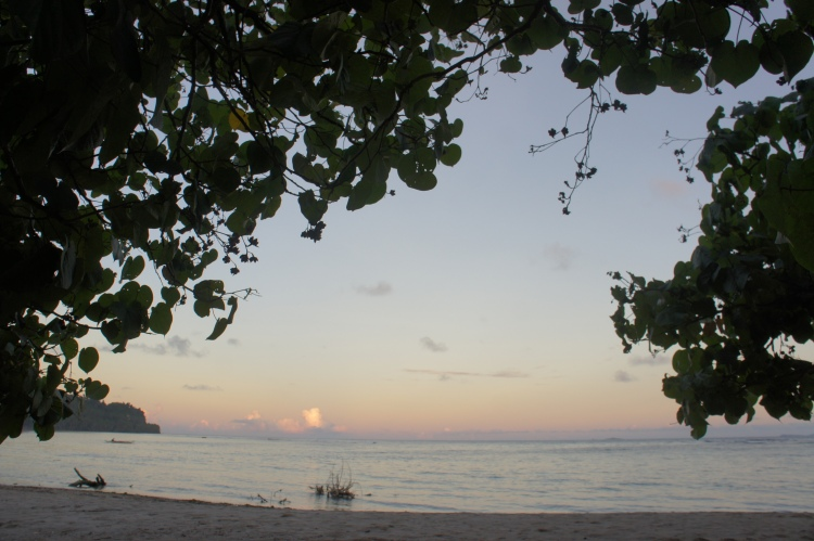 Sea view from under the Malubago canopy in Dancalan, Bulusan